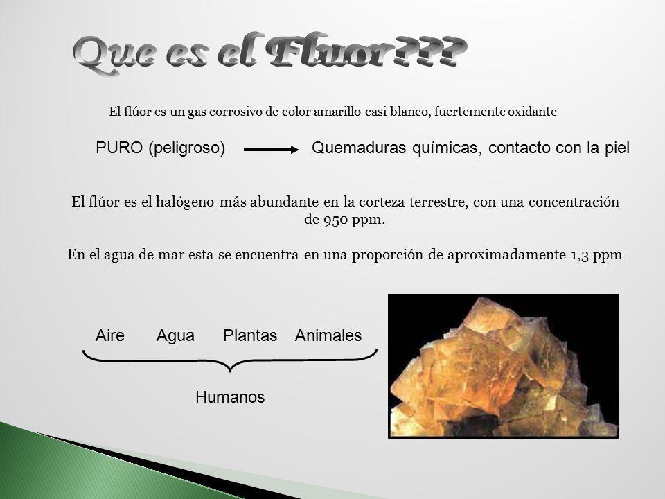 Que es el Fluor PURO (peligroso)