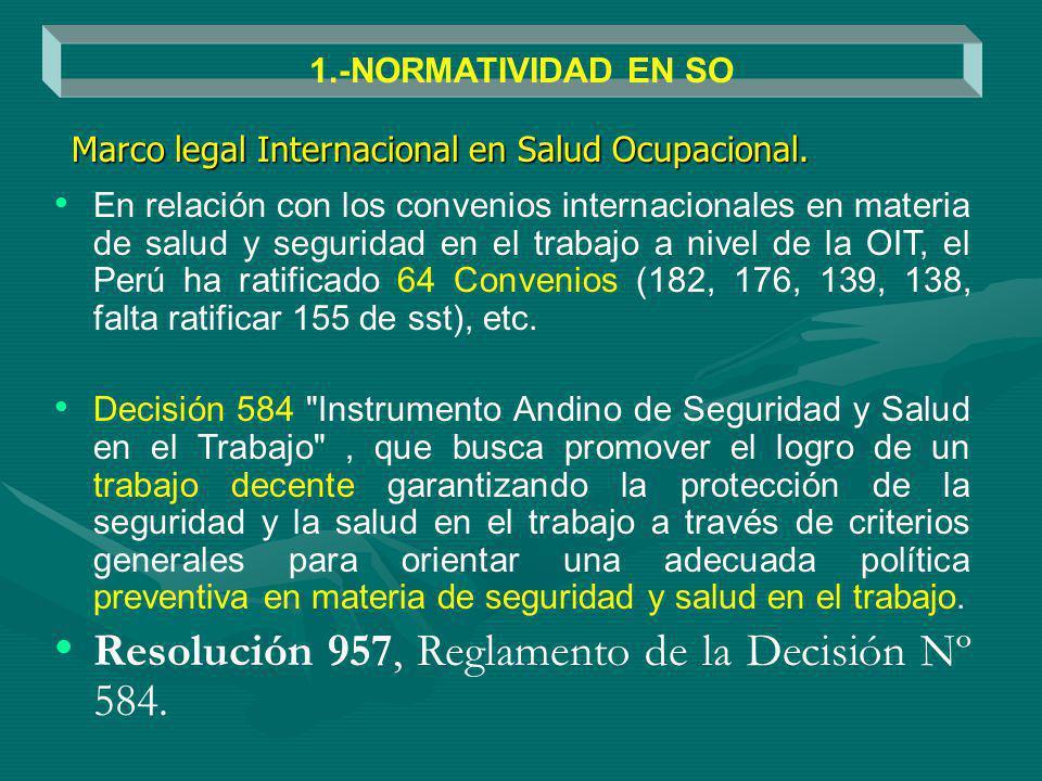 Resolución 957, Reglamento de la Decisión Nº 584.