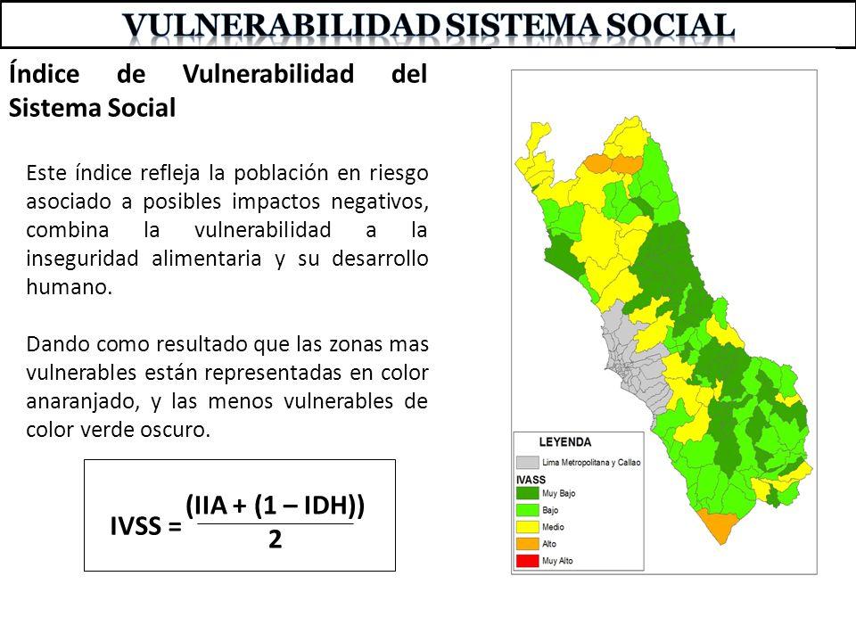 VULNERABILIDAD SISTEMA SOCIAL