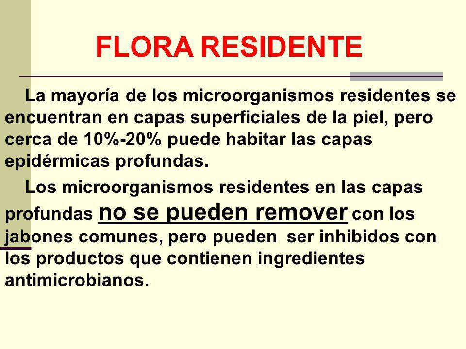 FLORA RESIDENTE