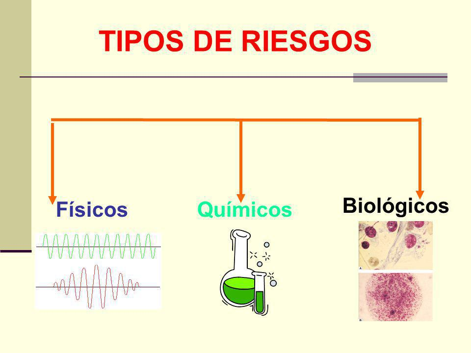 TIPOS DE RIESGOS Biológicos Físicos Químicos