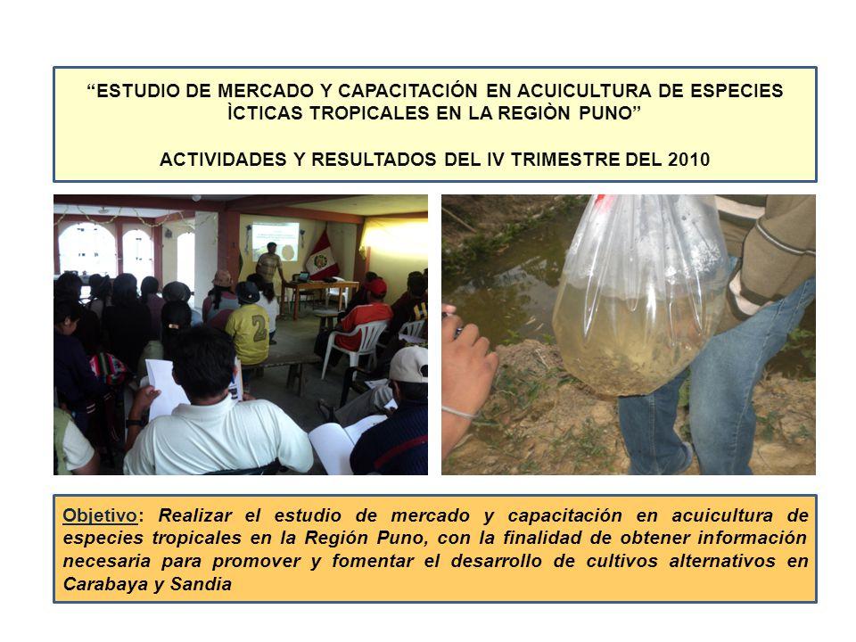 ACTIVIDADES Y RESULTADOS DEL IV TRIMESTRE DEL 2010