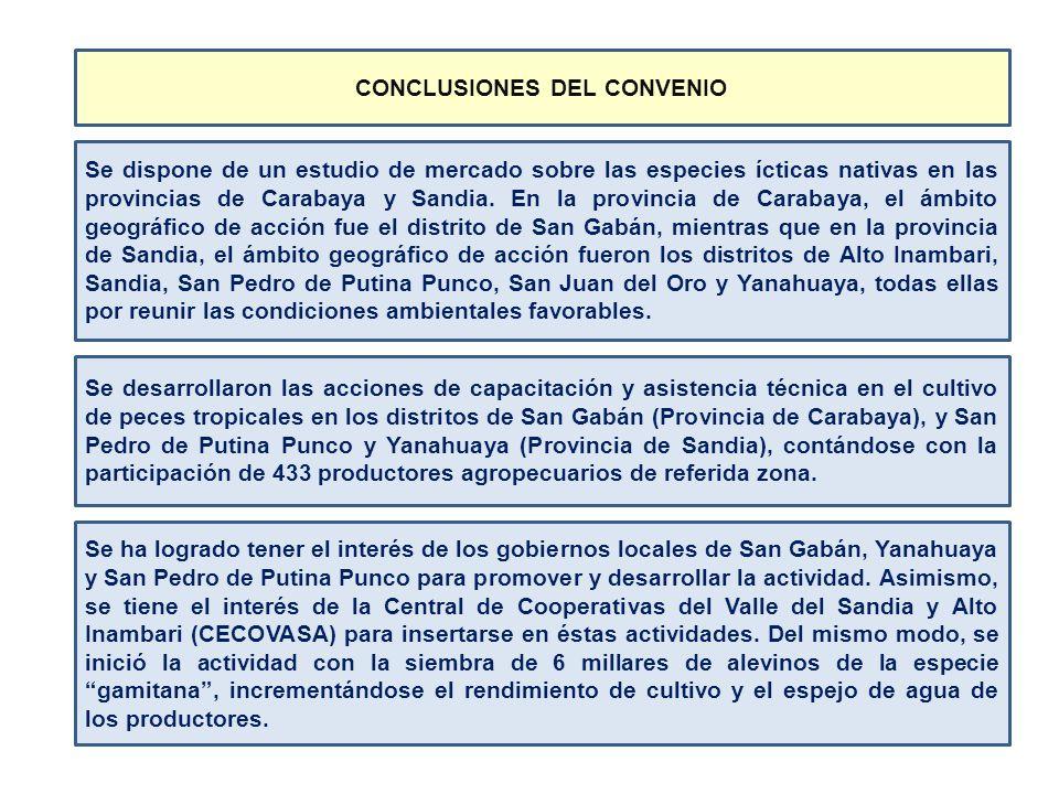 CONCLUSIONES DEL CONVENIO