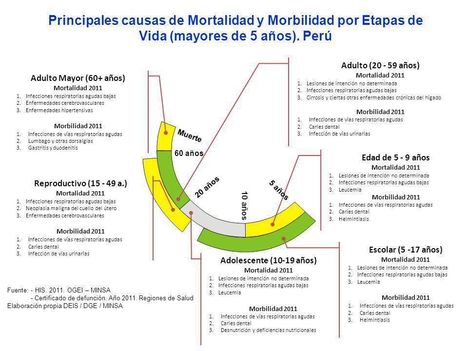 Principales causas de Mortalidad y Morbilidad por Etapas de Vida (mayores de 5 años). Perú
