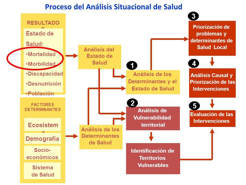 Proceso del Análisis Situacional de Salud