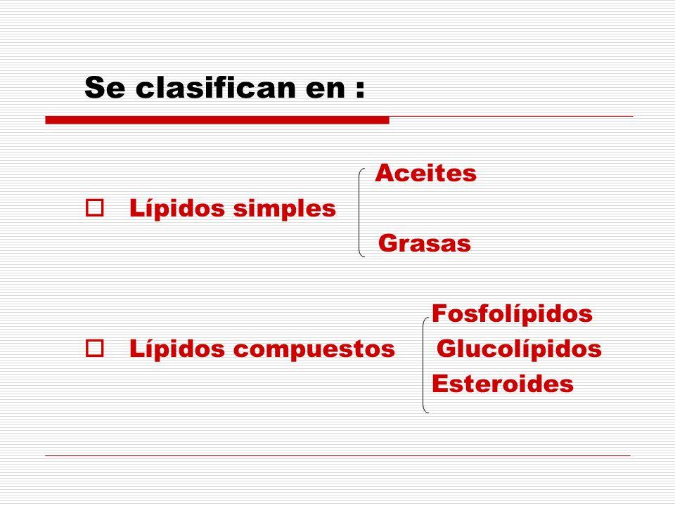 Se clasifican en : Aceites Lípidos simples Grasas Fosfolípidos