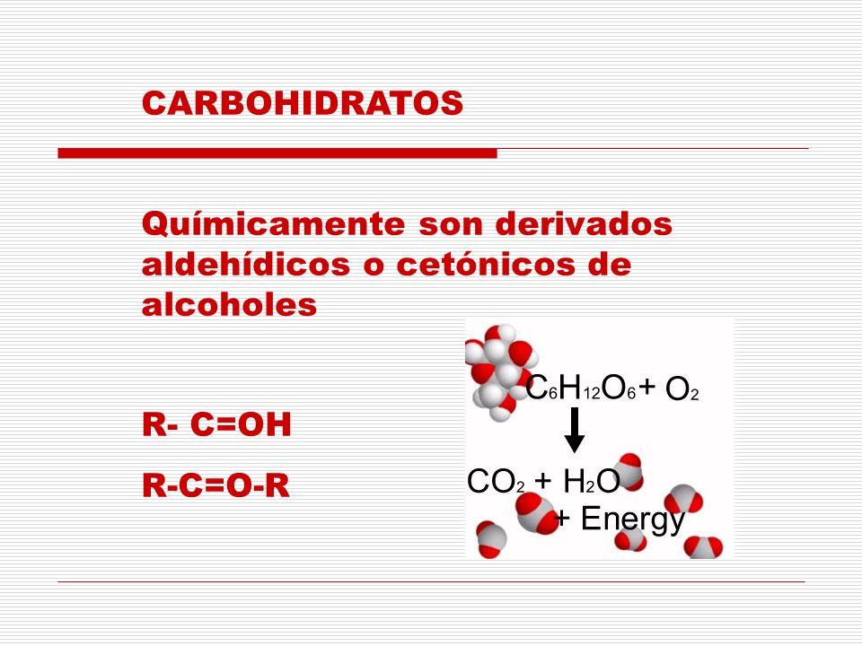 CARBOHIDRATOS Químicamente son derivados aldehídicos o cetónicos de alcoholes R- C=OH R-C=O-R