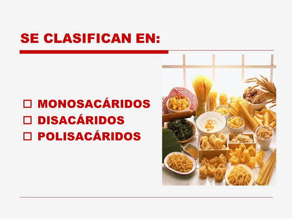 SE CLASIFICAN EN: MONOSACÁRIDOS DISACÁRIDOS POLISACÁRIDOS