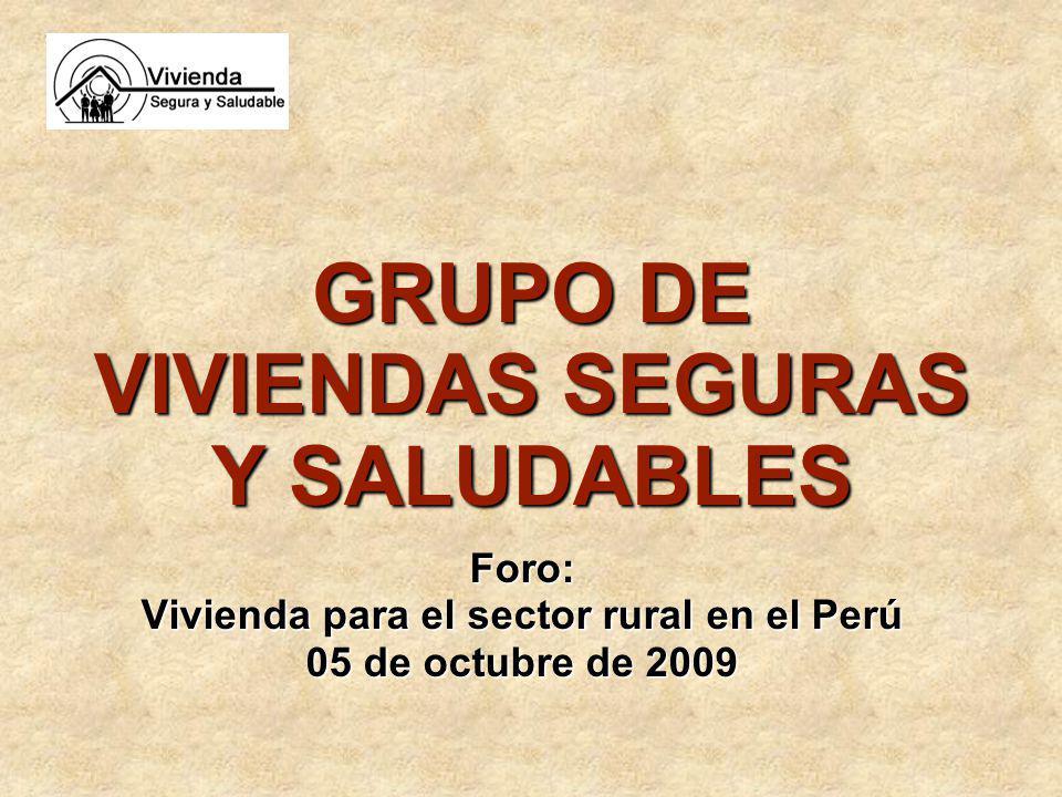 GRUPO DE VIVIENDAS SEGURAS Y SALUDABLES