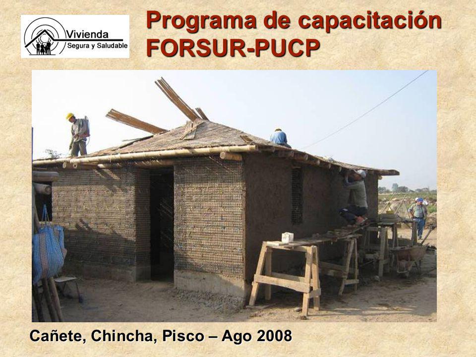 Programa de capacitación FORSUR-PUCP