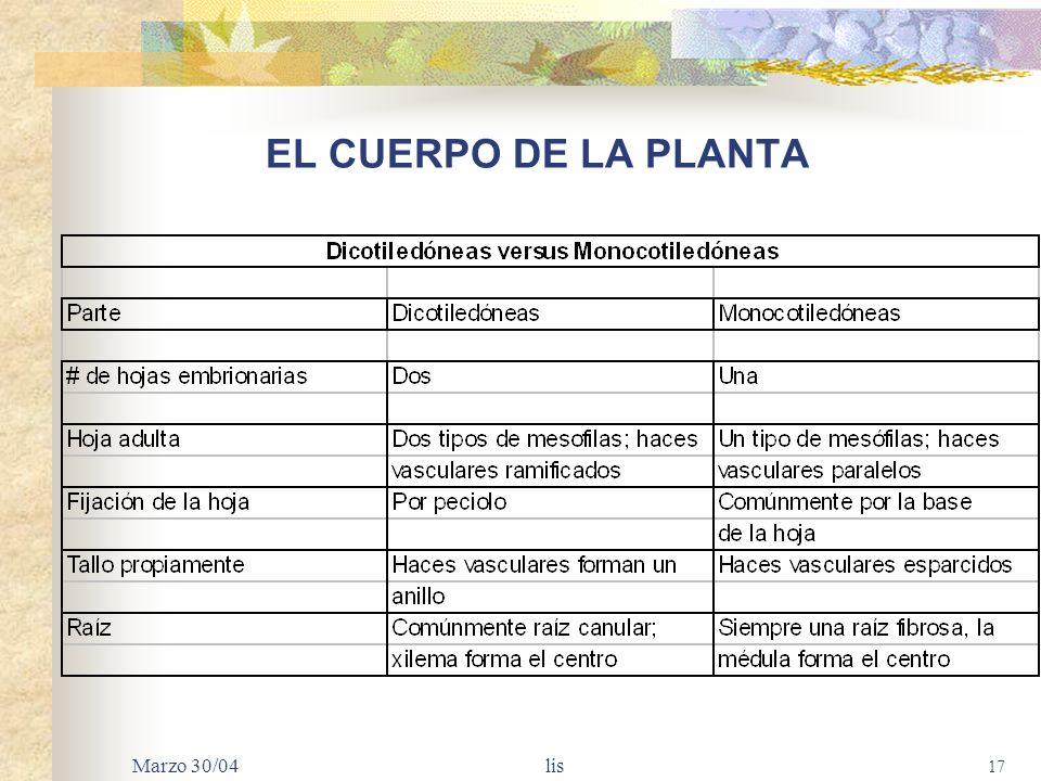 EL CUERPO DE LA PLANTA Marzo 30/04 lis