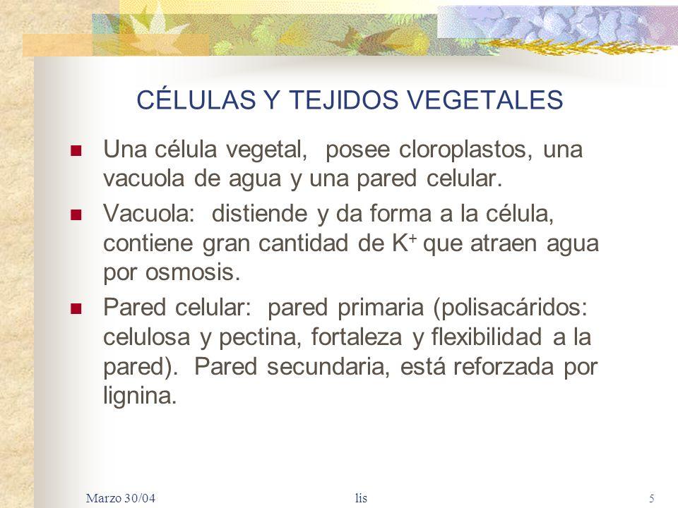 CÉLULAS Y TEJIDOS VEGETALES