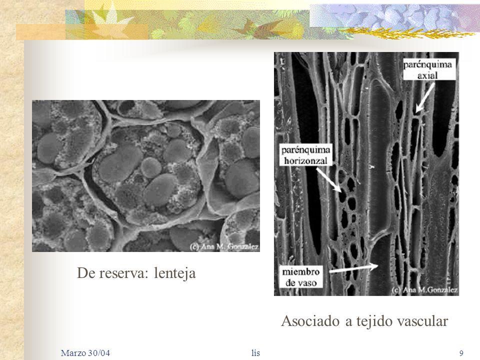 Asociado a tejido vascular