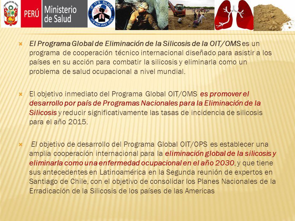 El Programa Global de Eliminación de la Silicosis de la OIT/OMS es un programa de cooperación técnico internacional diseñado para asistir a los países en su acción para combatir la silicosis y eliminarla como un problema de salud ocupacional a nivel mundial.
