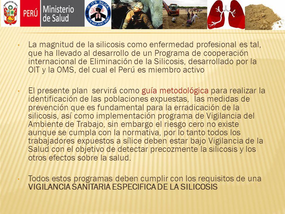 La magnitud de la silicosis como enfermedad profesional es tal, que ha llevado al desarrollo de un Programa de cooperación internacional de Eliminación de la Silicosis, desarrollado por la OIT y la OMS, del cual el Perú es miembro activo