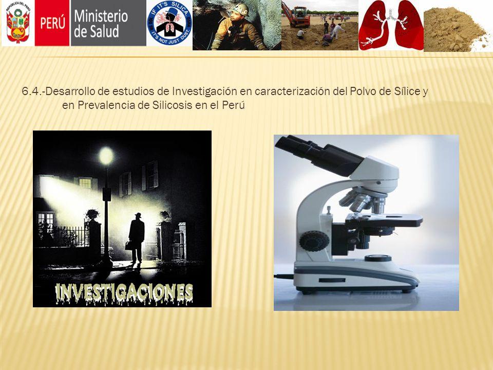 6.4.-Desarrollo de estudios de Investigación en caracterización del Polvo de Sílice y