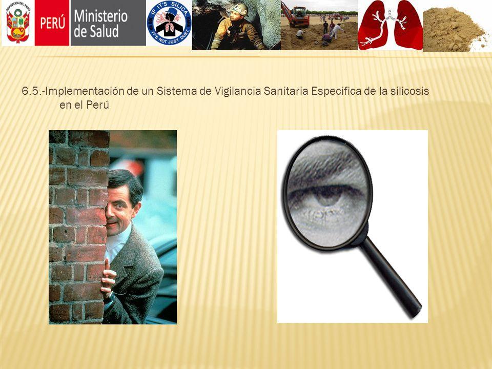 6.5.-Implementación de un Sistema de Vigilancia Sanitaria Especifica de la silicosis