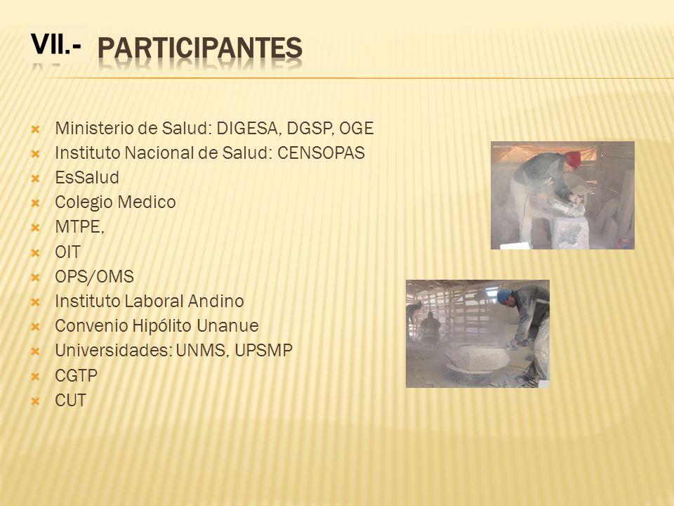 V.- PARTICIPANTES VII.- Ministerio de Salud: DIGESA, DGSP, OGE