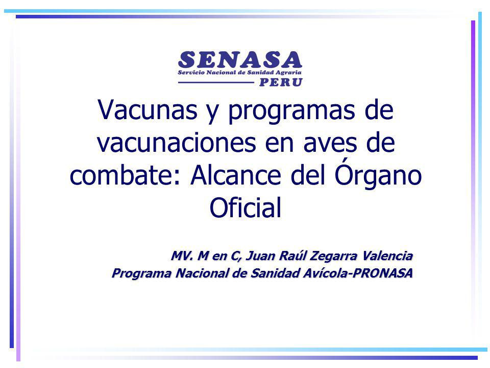 Vacunas y programas de vacunaciones en aves de combate: Alcance del Órgano Oficial