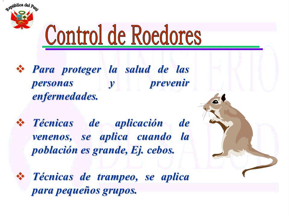 Control de Roedores Para proteger la salud de las personas y prevenir enfermedades.