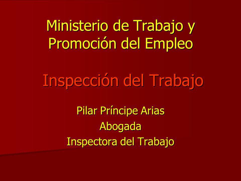 Ministerio de trabajo y promoci n del empleo inspecci n for Ministerio del interior empleo