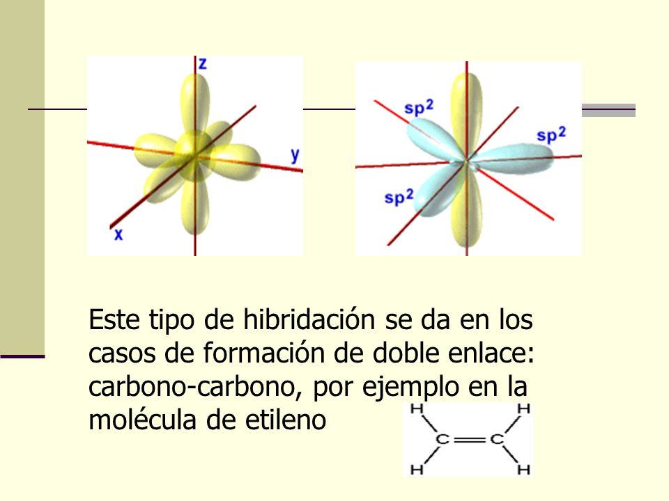 Este tipo de hibridación se da en los casos de formación de doble enlace: carbono-carbono, por ejemplo en la molécula de etileno