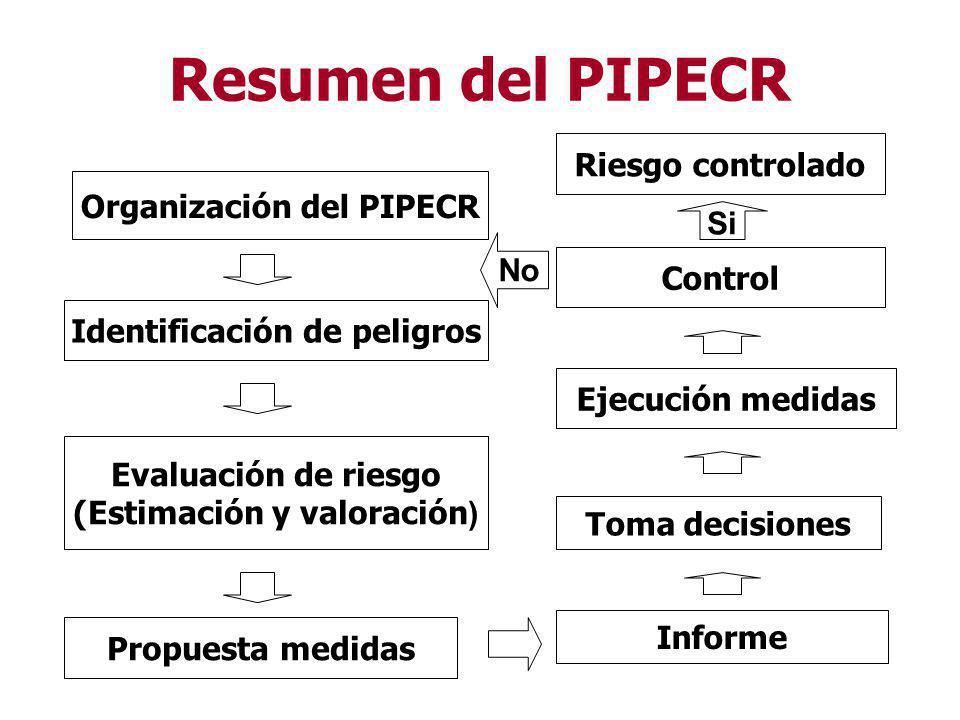 Resumen del PIPECR Riesgo controlado Organización del PIPECR Si No