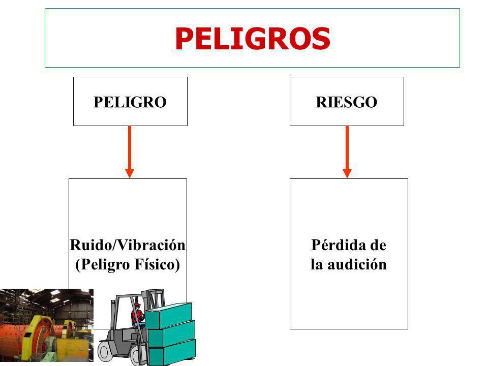 PELIGROS PELIGRO RIESGO Ruido/Vibración (Peligro Físico) Pérdida de