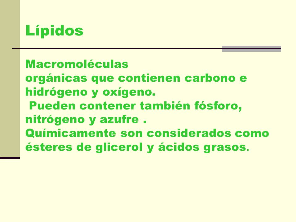 Lípidos Macromoléculas