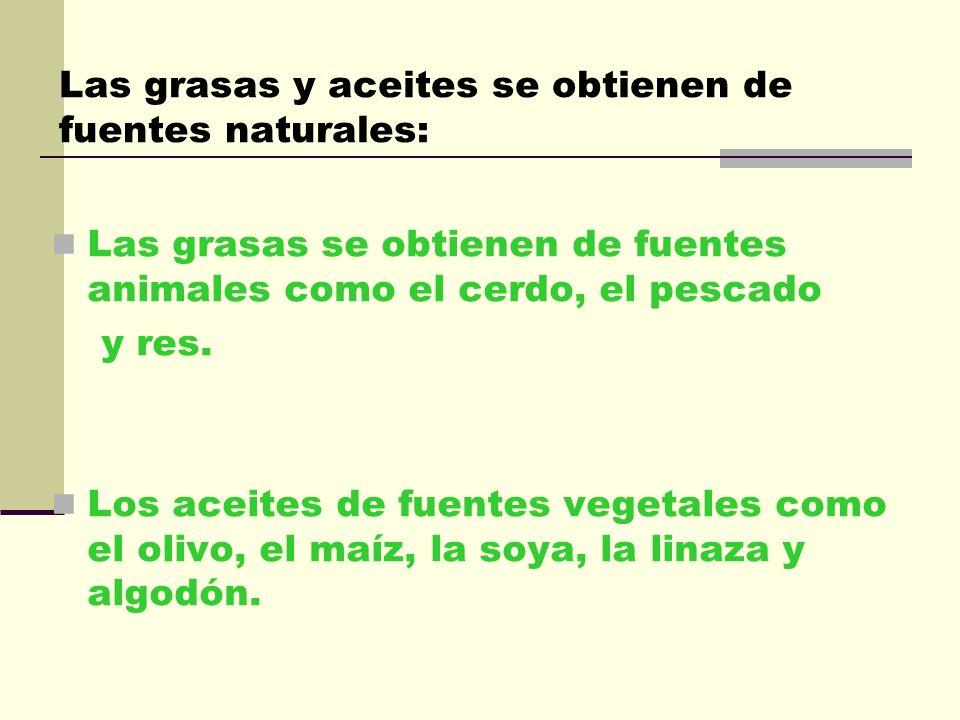 Las grasas y aceites se obtienen de fuentes naturales: