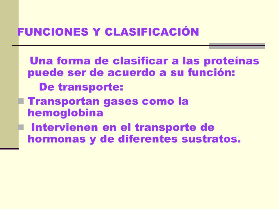 FUNCIONES Y CLASIFICACIÓN