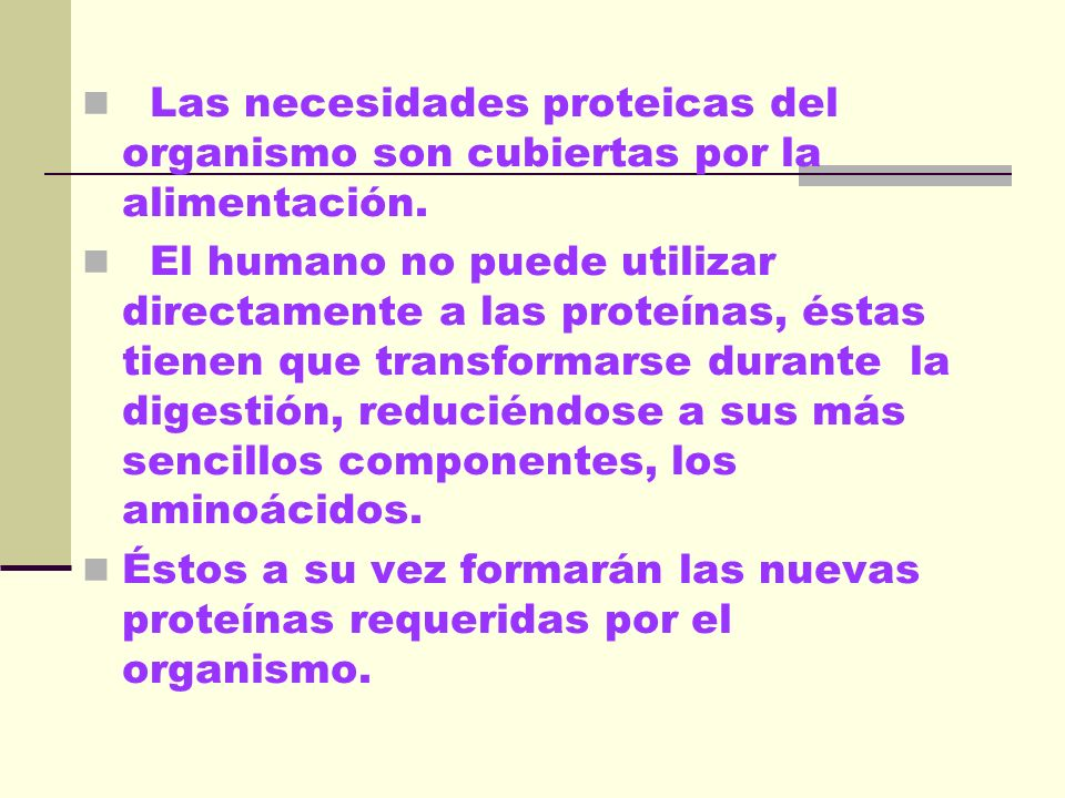 Las necesidades proteicas del organismo son cubiertas por la alimentación.
