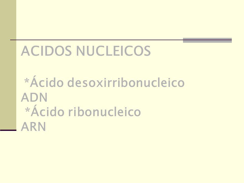 ACIDOS NUCLEICOS *Ácido desoxirribonucleico ADN *Ácido ribonucleico ARN