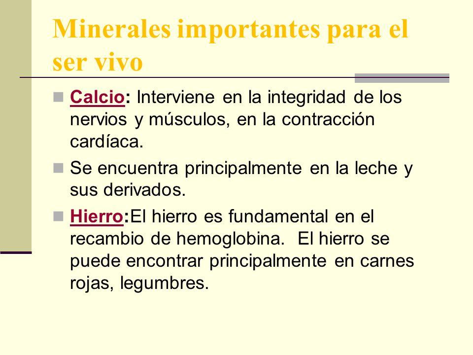Minerales importantes para el ser vivo