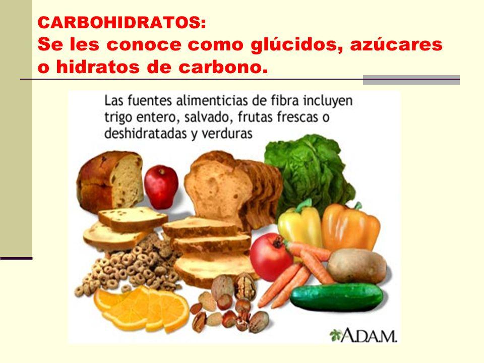 CARBOHIDRATOS: Se les conoce como glúcidos, azúcares o hidratos de carbono.
