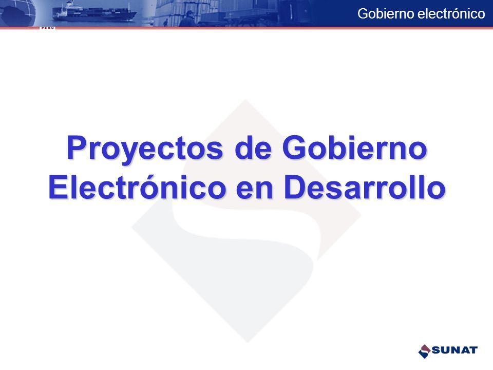 Electrónico en Desarrollo
