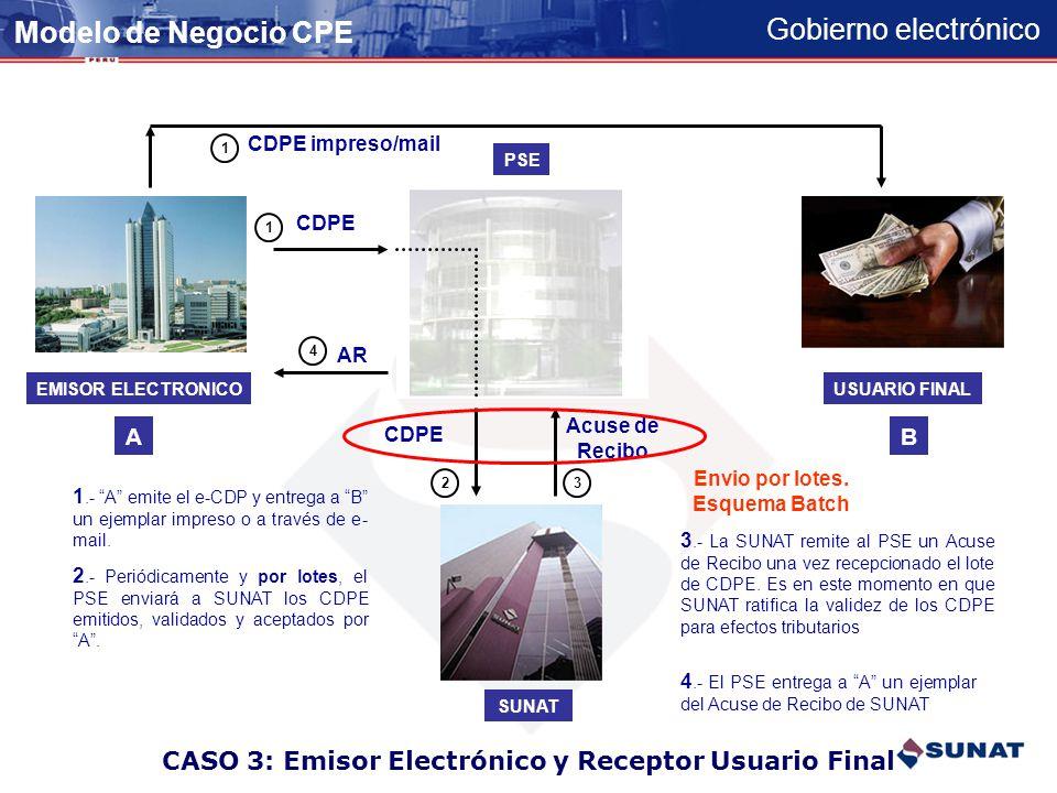 CASO 3: Emisor Electrónico y Receptor Usuario Final
