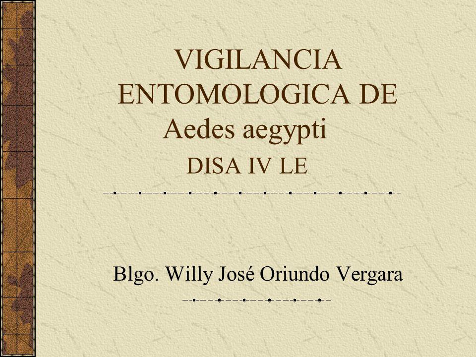 VIGILANCIA ENTOMOLOGICA DE Aedes aegypti DISA IV LE
