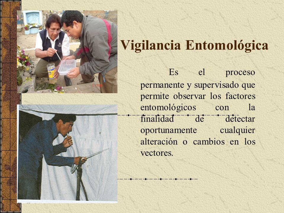 Vigilancia Entomológica