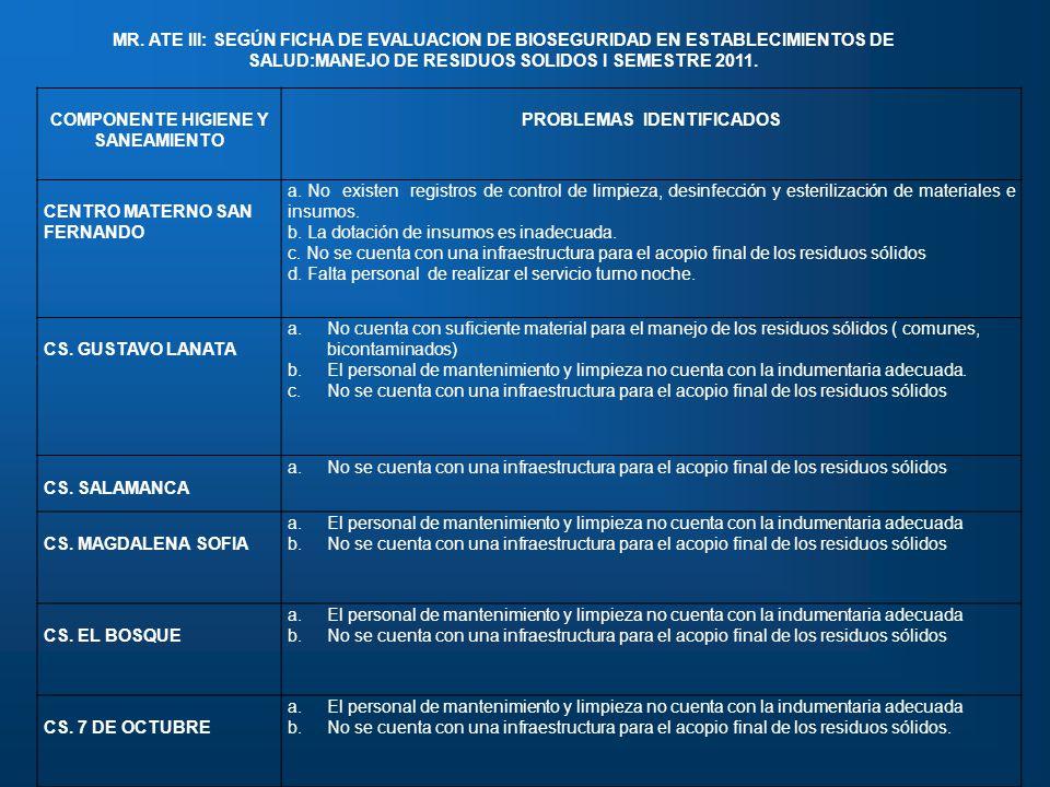 COMPONENTE HIGIENE Y SANEAMIENTO PROBLEMAS IDENTIFICADOS