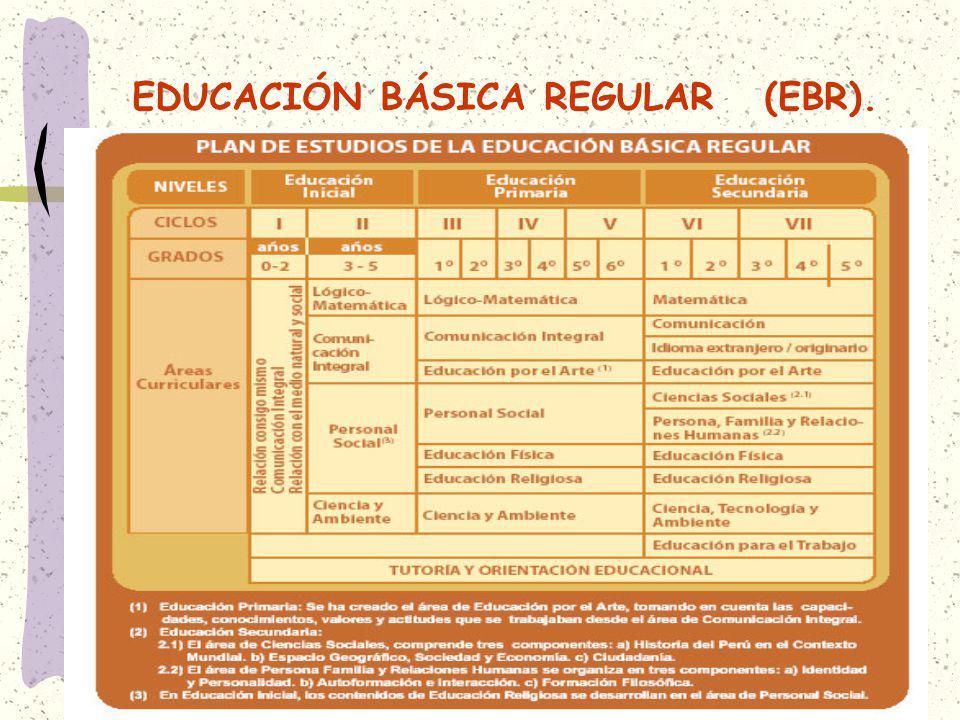EDUCACIÓN BÁSICA REGULAR (EBR).