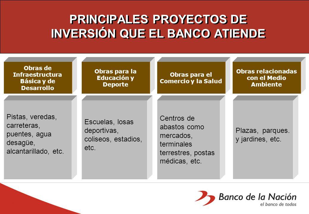 PRINCIPALES PROYECTOS DE INVERSIÓN QUE EL BANCO ATIENDE