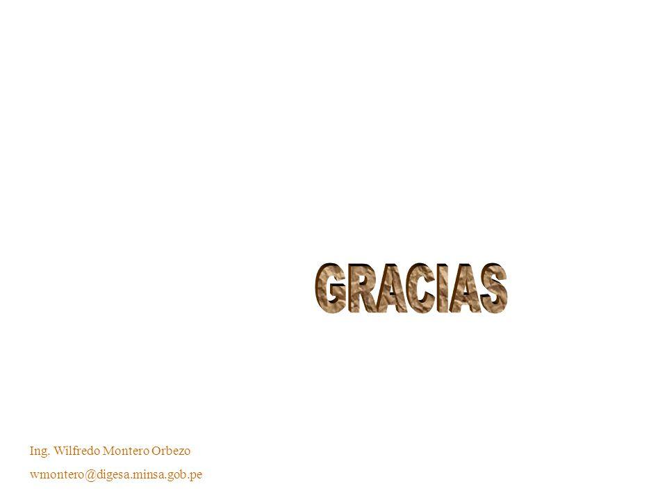 GRACIAS Ing. Wilfredo Montero Orbezo wmontero@digesa.minsa.gob.pe