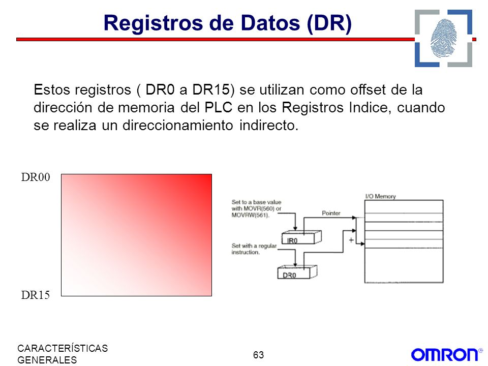 Registros de Datos (DR)