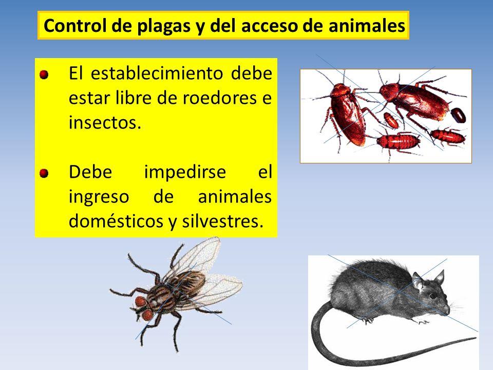 Control de plagas y del acceso de animales