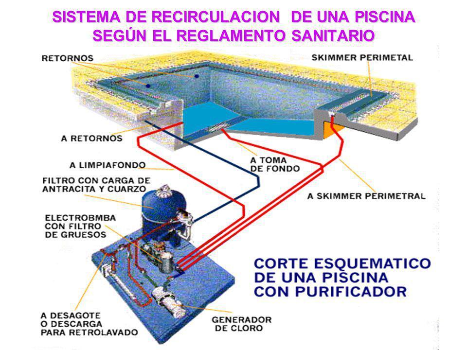 SISTEMA DE RECIRCULACION DE UNA PISCINA SEGÚN EL REGLAMENTO SANITARIO
