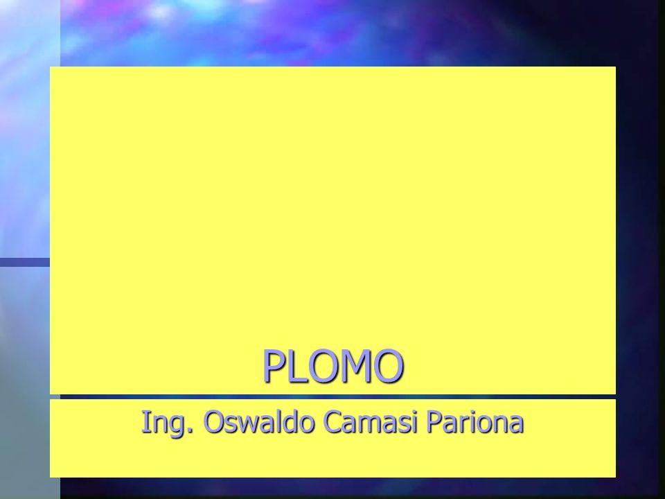 Ing. Oswaldo Camasi Pariona