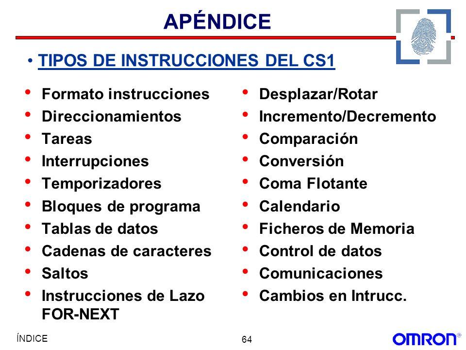 APÉNDICE TIPOS DE INSTRUCCIONES DEL CS1 Formato instrucciones