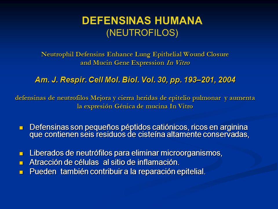 DEFENSINAS HUMANA (NEUTROFILOS)