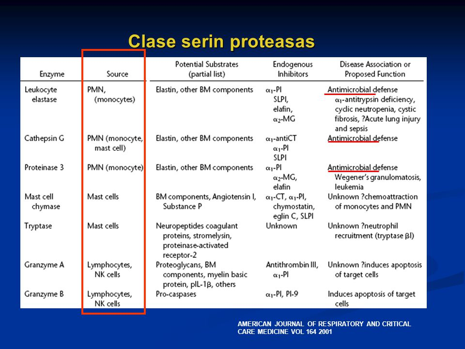Clase serin proteasas AMERICAN JOURNAL OF RESPIRATORY AND CRITICAL